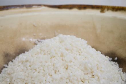 宮崎のお米