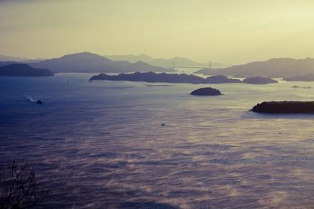 海霧に朝日差す
