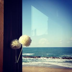 カフェ風からの眺め