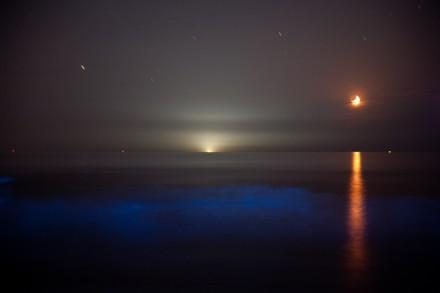 三日月、漁火、夜光虫