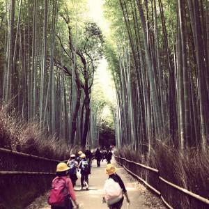 竹林と修学旅行の子どもたち