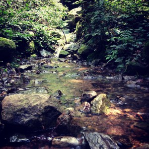 熊井の滝付近